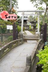 Ueno Kouen (Seruru) Tags: japon japan tokio ueno parque park inori temple templo puente bridge arquitectura architecture