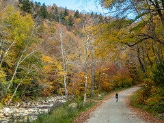 The best time... the best place... (Shu-Sin) Tags: green mountains fall vermont dirt road cyclist bike touring cyclotouring randonneur velo autumn colors leaves trees stream new england