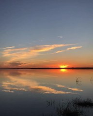 Never allow yourself to be made a victim. Accept no one's definition of your life; define yourself. Follow Me On Snapchat:jet7black Facebook:Jet7Black Instagram:jet7black Twitter:Jet7Black (Jet7Black) Tags: tampa naples sanibel spi elpaso laredo dallascowboys dallas sanantonio sanfrancisco sandiego bluesky sky cloudy cloud beautiful southbeach miami orlando keywest galvestonislandstatepark galvestonisland galveston houston beach sea oceans ocean river lakeside lake colorado iowa montana idaho california florida texas sunshine sunny sun sunset