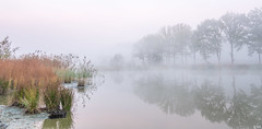 Quiet Morning (Martine Lambrechts) Tags: quiet morning misty foggy nature water autumn landscape