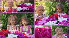 Kindergartenkinder ... (Kindergartenkinder 2018) Tags: gruga park essen blumen alpenveilchen kindergartenkinder annemoni milina sanrike tivi