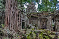Temple ruins of Ta Prohm (a.k.a. jungle temple) in Angkor Archeological Park near Siem Reap, Cambodia (UweBKK (α 77 on )) Tags: ta prohm jungle temple ruins stone tree root architecture building ancient history historical archeology angkor archeological park siem reap cambodia southeast asia sony alpha 77 slt dslr