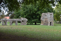 Bury St Edmunds: Abbey ruins (robin.croft) Tags: suffolk burystedmunds saintedmund benedictines ruins abbey