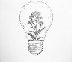 Flowers Drawings Inspiration : pinterest ↠ roseclairdelune (flowersdottn) Tags: flowers