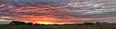 Fire Sky Sunset_B (northern_nights) Tags: pano panorama sunset firesky cheyenne wyoming