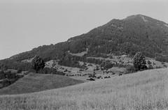 Blick auf Rigi Berg aus Weggis (PO3YEJlb) Tags: argentic argentique blackandwhite nb ilford hp5plus 400asa pentax k1000 analog noiretblanc