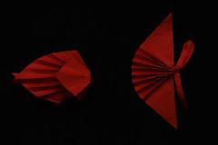 Fish object (Hojyo Takashi) (De Rode Olifant) Tags: origami hojyotakashi fishobject marjansmeijsters 3d origamifish fish diagrams tanteidan tanteidan7thconventionbook paperart paper paperfolding