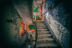 5 (tbolt-photography.com) Tags: d750 derp derpy derelict derelictbuildings derelictplaces decay abandoned abandonedplaces abandonedbuildings pripyat urbex urbandecay urbanexploration urbanexplore ukraine chernobyl radiation exclusion zone
