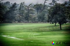 Quando piove...sui campi da golf (Gianni Armano) Tags: quando piove sui campi da golf club margara fubine foto gianni armano photo flickr