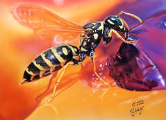 Sweet tooth  (Yellow jacket wasp) (irishishka) Tags: art pastelpainting yellowjacketwasp sweettooth drypastel artirishishka realism hyperrealism animals insects macro wasp painting