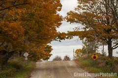 IMG_7580_result (ferrariartist) Tags: delorean gullwing automobiles automotive automobile 80s stainless car sportscar irish fall autumn ferrariartist