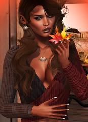 Fall Is In The Air Close Up (Indigo Avonside of My Sister's Closet) Tags: indigo lelutka maitreya revoul iconic prism zurijewelry gorgeousdolls belleposes scala