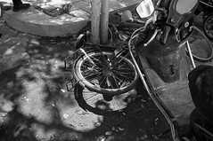 Bicycle (飞鸿留影) Tags: bicycle zeissikon zeissikonzm zm film 35mmfilm rangefinder carlzeiss distagont2815 biogont2825 csonnart1550 leicasummilux35mmf14asph leicasummiluxm50mmf14asph summiluxm3514a summiluxm5014a m5014a m3514a summilux filmphotography china street snapshot streetshot documentary blackwhite blackandwhite bw architecture people portrait landscape cityscape wuxi positive