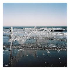 Web (AStomatin) Tags: analog film travel medium bronica portra nikon nikkor standart lens trip water sky people photo add ocean sea grass bay fish
