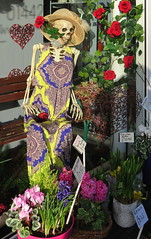 Juliet awaiting the perfect man (Snapshooter46) Tags: skeleton shopwindow florist highstreet tring magnolia roses