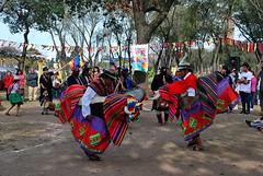 Agrupacion Wayra Marka, Septimo festival de Sikuris. Rosario Argentina (DardoEloy) Tags: argentina santafe rosario originarios wayras