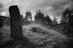 Standing Stone, Spittal of Glenshee (ShinyPhotoScotland) Tags: art places scotland perthshire toned building monochrome blackandwhite glenshee spittalofglenshee megalith standingstone menhir pictish ancient old trees wind clouds light stone fujixh1 hdr enfuse