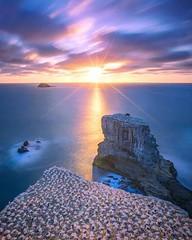 🌎 New Zealand |  Rach Stewart Photography (travelingpage) Tags: travel traveling traveler destinations journey trip vacation places explore explorer adventure adventurer