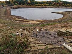 Drought (tubblesnap) Tags: ogden water reservoir halifax motorola motog3 walk ramble moors moorland drought level