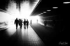 Into the Light  (in Explore) (cheryl strahl) Tags: europe netherlands thenetherlands amsterdam centraalstation tunnel blackwhite pedestrians bicycles flickrexplore explore