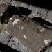 293 Concrete Base in Trailer