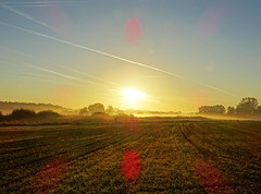 Mist over the Fields (The-Beauty-Of-Nature) Tags: autumn fall herbst cozy october nature morning morgen sunrise sonnenaufgang fog nebel mist light licht early früh sun sonne sunny sonnig fields feld