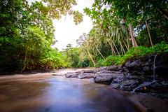 River through jungle (dannygreyton) Tags: tegenungan indonesia asia bali river jungle stream waterfall fujifilmxt2 fujifilm fujifilmxseries fujinon1024mm nature longexposure longexposureshot