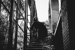 Black Queen (Strukovsky) Tags: wind mantle cloack bw stairs walk woman tattoo