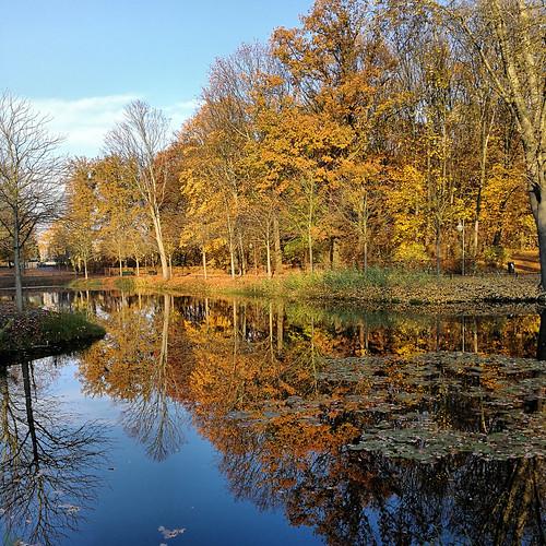 November am Blümelteich