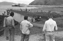 Album2film143-039b (Stichting Papua Erfgoed) Tags: stichtingpapuaerfgoed pace