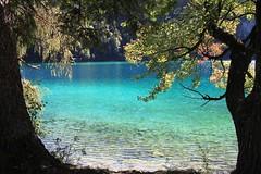Hintersteiner See bei Scheffau...ein Traum (Heide56) Tags: tirol scheffau see hintersteiner