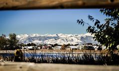 Front Range first Snow (Rsw0124) Tags: mountains colorado front range snow trees ridge