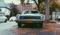 M a v e r i c k (0sire) Tags: phonecamera blue ford maverick fall autumn woodhaven queens nyc newyorkcity overcast rain