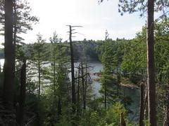 Lake of the Woods 5 (D. S. Hałas) Tags: halas hałas canada ontario sudburydistrict manitoulindistrict carlyletownship killarney killarneylakelandsandheadwatersprovincialpark lakeofthewoodstrail lakeofthewoods