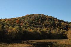 Hill (historygradguy (jobhunting)) Tags: easton ny newyork upstate washingtoncounty fall autumn landscape hill fallcolors marshland