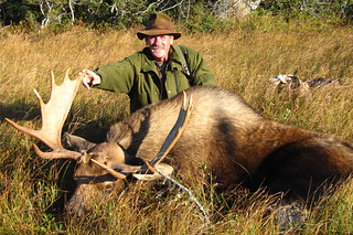 fNewfoundland Caribou Hunt, Moose, Bear Hunting 14