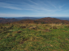 Looking North from Max Patch, Pisgah National Forest, North Carolina (netbros) Tags: pisgahnationalforest northcarolina tennessee maxpatch appalachiantrail fallfoliage clearsky netbros internetbrothers