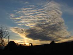 All Hallow's eve sunset (creed_400) Tags: sunset dusk clouds sky sun dog halloween autumn fall october belmont west michigan