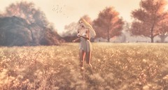 Run to you... (scarlettrose.karsin) Tags: whimberly catwa doux maitreya runtoyou sl secondlife fall autumn avatar