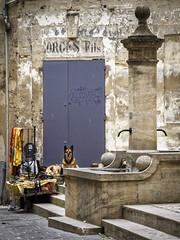 Le gardien (Lucille-bs) Tags: europe france occitanie gard uzès rue chien fontaine porte marche étalage