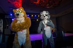 DSC09007 (Kory / Leo Nardo) Tags: pacanthro pawcon paw con pac anthro convention fur furry fursuit suiting mascot sona fursona san jose doubletree hotel california dance party deck animals costuming pupleo 2018