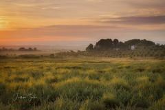 Cambio de estación (Yaco1959) Tags: albada madrugada paisaje otoño cielo hierba rossello
