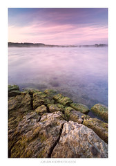 Purple Haze (Amar Sood) Tags: amarsoodphotocom amarsoodphotography lake water morning bluehour landscape landscapes sony a7rii 16354 wideangle formatthitech firecrest
