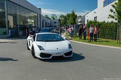 LP560-4 (Alessandro_059) Tags: lamborghini gallardo lp5604 white cars coffee knokke