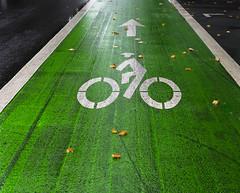 Wet Green Bike Path (Orbmiser) Tags: mzuikoed1240mmf28pro 43rds em1 mirrorless olympus ore portland raindrops raining wet m43rds road asphalt bike path green symbol