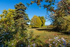 Petit à petit, l'automne chasse l'été et s'installe…(Savoie 10/2018) (gerardcarron) Tags: arbres automne autumn canon80d paysage