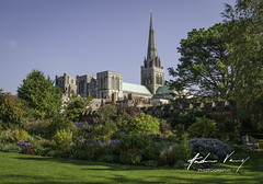 Bishop's Palace Gardens and Chichester Cathedral (andrew.varney) Tags: sussex chichester outside nikon d5100 england religion cathedral history