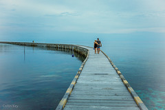 love is an endless road to lovers (Collin Key) Tags: horizon bajau blue romance ocean love sulawesi togianislands bajo malenge jetty indonesia pulaupapan couple tojounauna sulawesitengah indonesien id