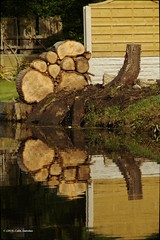 30K01062a_C (Kernowfile) Tags: reflection water logs fence bushes grass leedsliverpoolcanal maghull canal