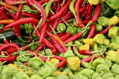 Brightly colored veggies (Read2me) Tags: sowamarket pree tcfe cye peppers vegetables produce manyshop store red yellow green dof